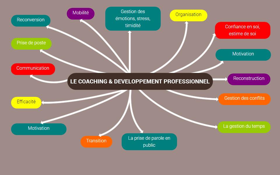 coaching et developpement preofessionnel